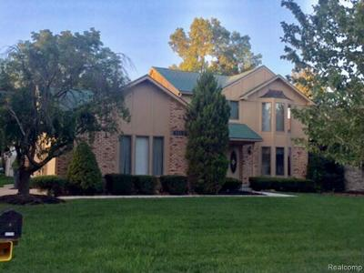 Novi Single Family Home For Sale: 41162 Marks Dr.