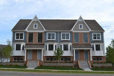 Milford Condo/Townhouse For Sale: 587 Village Ln