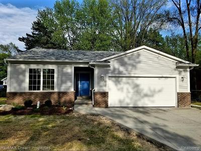 Farmington Hill Single Family Home For Sale: 22164 W Brandon St
