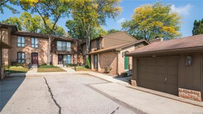 Ann Arbor Condo/Townhouse For Sale: 1054 Greenhills Dr
