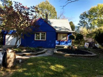 Ann Arbor Single Family Home For Sale: 2729 Parkwood Ave