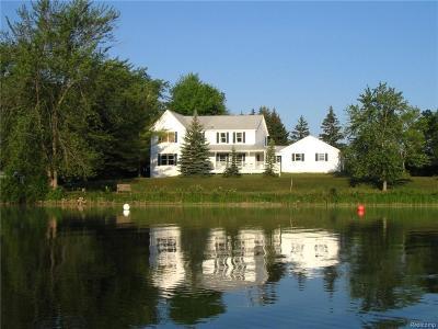 Dexter Single Family Home For Sale: 8544 Pellett Dr