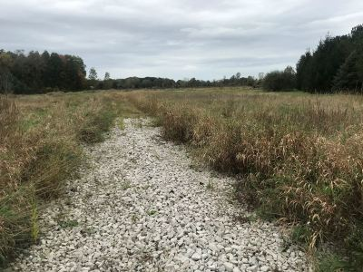 Milan MI Residential Lots & Land For Sale: $99,900