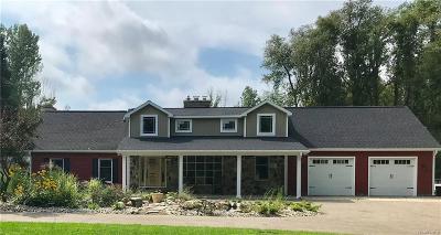Kalamazoo Single Family Home For Sale: 10169 W M Ave