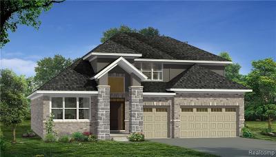 Novi Single Family Home For Sale: 43632 Bolingbrooke Ln