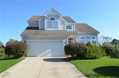Dexter Single Family Home For Sale: 3735 Meadow View Dr
