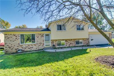 Single Family Home For Sale: 4881 Greer Rd