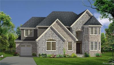 Novi Single Family Home For Sale: 43547 Bolingbrooke Ln