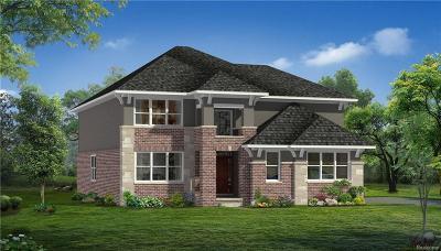 Novi Single Family Home For Sale: 43636 Ellesmere Cir