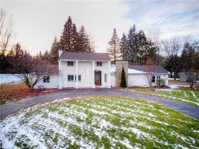Novi Single Family Home For Sale: 24895 Dinser Dr