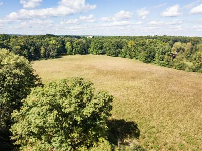 Dexter MI Residential Lots & Land For Sale: $120,000