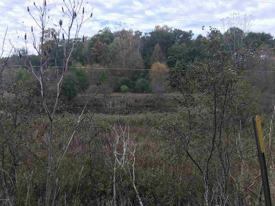 Hillsdale MI Residential Lots & Land For Sale: $44,900