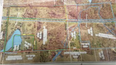 Addison MI Residential Lots & Land For Sale: $260,000