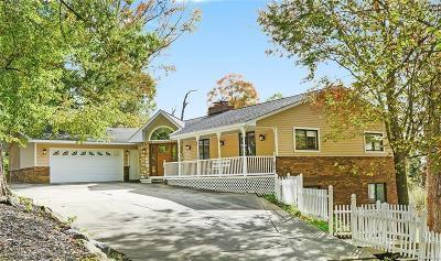 Brighton Single Family Home For Sale: 8088 Hammel Rd