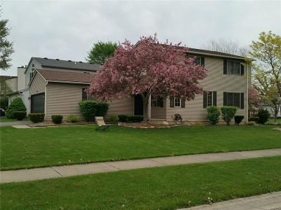 South Lyon Single Family Home Contingent - Financing: 810 Talon Crt