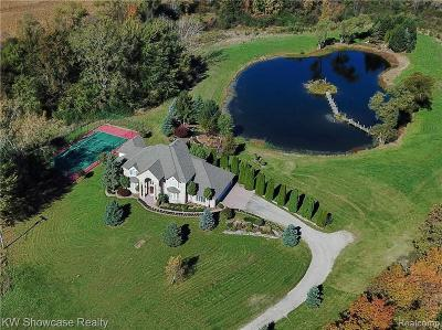 South Lyon Single Family Home For Sale: 6125 Pontiac Trail
