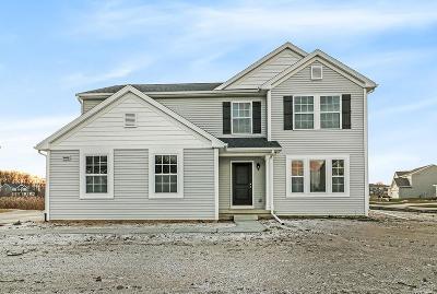 Washtenaw County Single Family Home For Sale: 9406 Neumann Cir