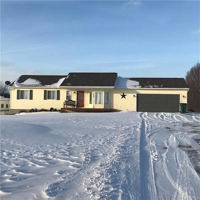 Webberville Single Family Home For Sale: 10068 Sober Rd
