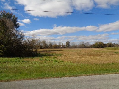Adrian MI Residential Lots & Land For Sale: $179,900