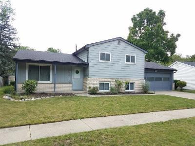 Ann Arbor Single Family Home For Sale: 1745 David Ct