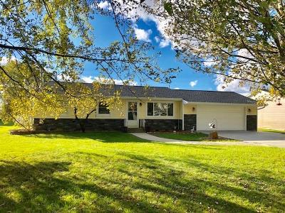 Grass Lake Single Family Home For Sale: 1158 Grandview Dr