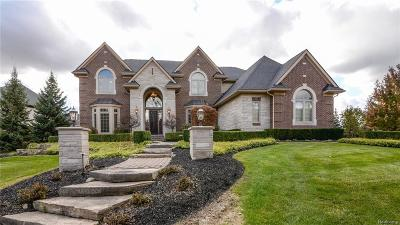 Northville Single Family Home For Sale: 18705 Marble Head Dr
