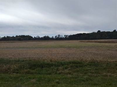 Morenci MI Residential Lots & Land For Sale: $139,999