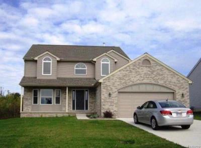 Ann Arbor Single Family Home For Sale: 3783 Burnham Rd