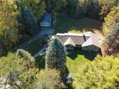 Northville Single Family Home For Sale: 625 Fairbrook St