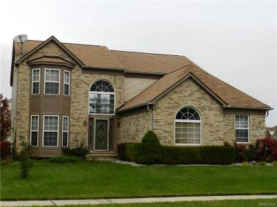 Washtenaw County Single Family Home For Sale: 8731 Lilly Dr