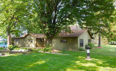Belleville Single Family Home For Sale: 1005 E Huron River Dr