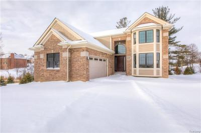 Northville Condo/Townhouse For Sale: 20217 Beacon Way