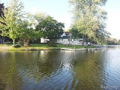 Washtenaw County Single Family Home For Sale: 254 Lakeview