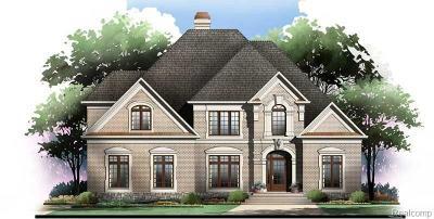 Northville Single Family Home For Sale: 18198 Parkshore Dr