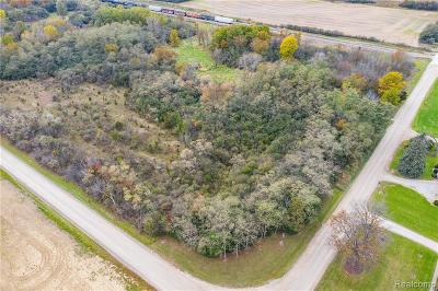 Ann Arbor MI Residential Lots & Land For Sale: $239,000