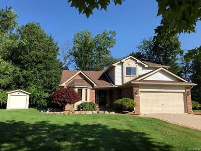 Livonia Single Family Home For Sale: 30994 Kenwood Crt