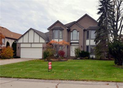 Farmington Hill Single Family Home For Sale: 31214 Country Ridge Cir