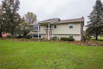 Stockbridge Single Family Home For Sale: 3595 Parman Rd