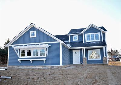 Brighton Single Family Home For Sale: 9140 Wooden Shoe Dr