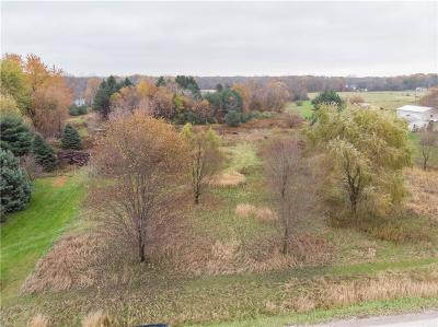South Lyon MI Residential Lots & Land For Sale: $120,000