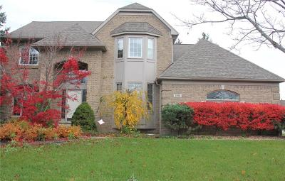 Canton Single Family Home For Sale: 1200 Crowndale Ln