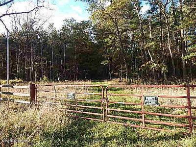 Jonesville MI Residential Lots & Land For Sale: $125,000