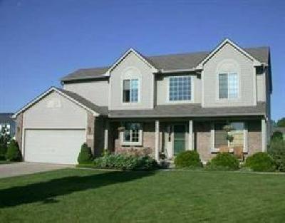 Ann Arbor Single Family Home For Sale: 2399 Marquis Crt