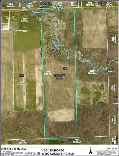 Hudson MI Residential Lots & Land For Sale: $139,900