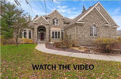 Grass Lake Single Family Home For Sale: 3682 Tims Lake Blvd