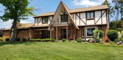 Farmington Hill Single Family Home For Sale: 35776 Johnstown Rd