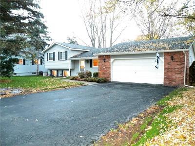 Single Family Home For Sale: 5145 Greer Rd