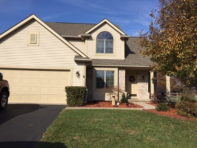 Lenawee County Single Family Home Contingent - Financing: 2448 Wood Ridge