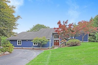 Ann Arbor Single Family Home For Sale: 2809 Craig Rd