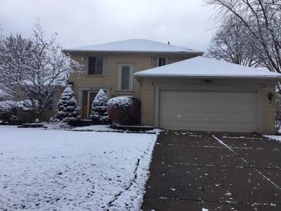 Farmington Hill Single Family Home For Sale: 35024 Valley Forge Dr